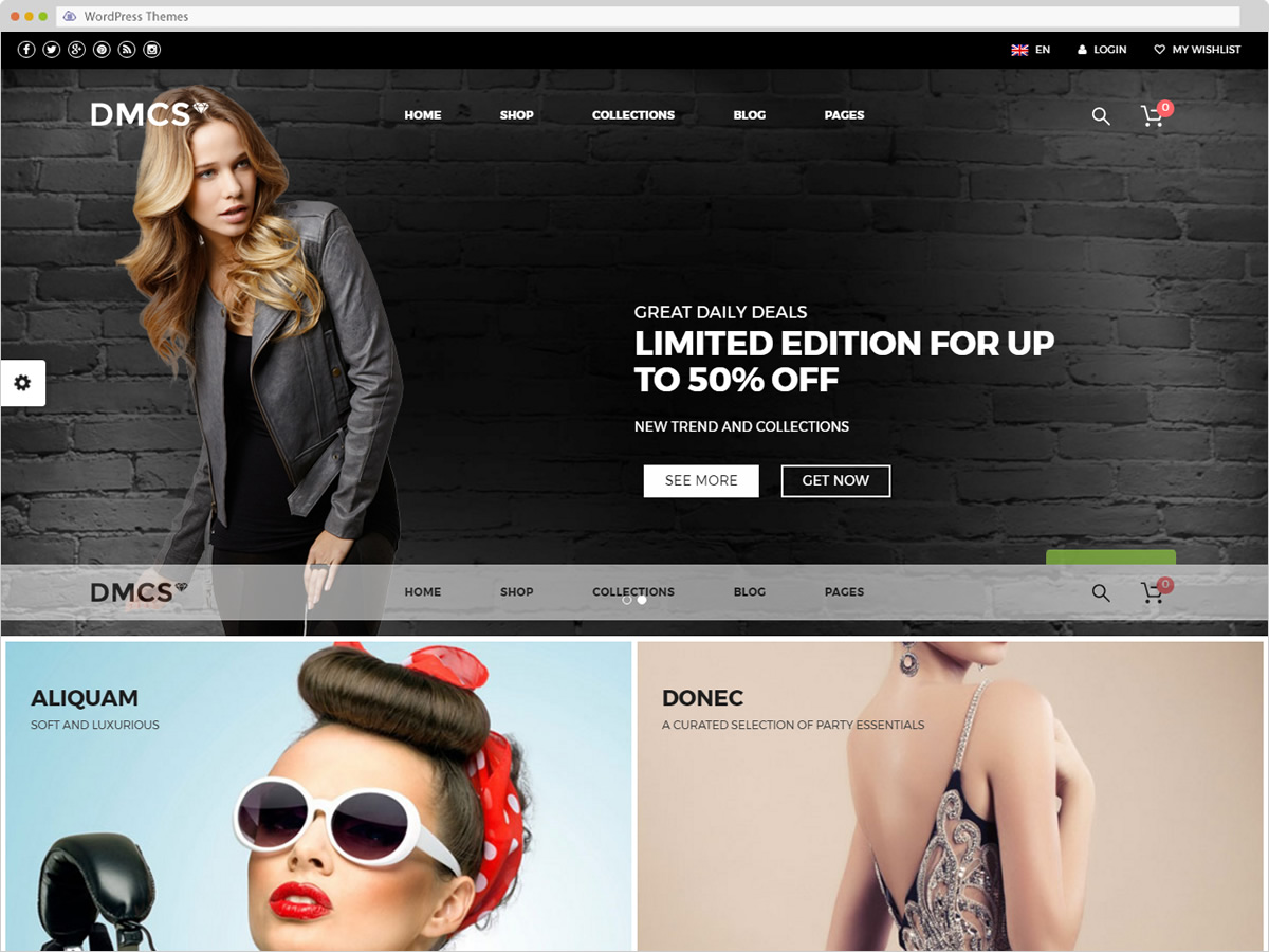 The DMCS WordPress Theme
